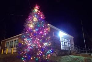 The Village Tree- Put up and decorated by your Village Commission.
