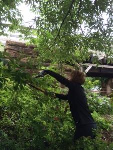 The intrepid Donna MacKinnon hacks her way through the Amazon jungle!